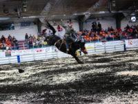 Rodéo Saskatchewan cheval en l'air