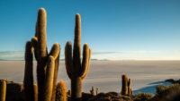 Lever de soleil ile de cactus