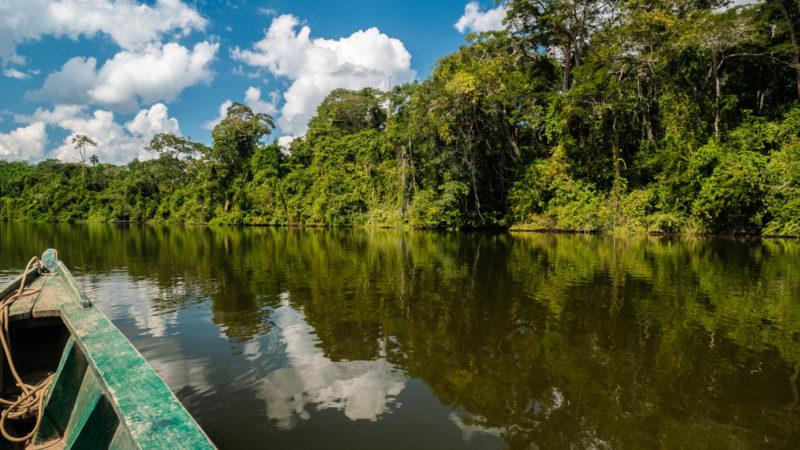 Lac Sandoval Puerto Maldonado