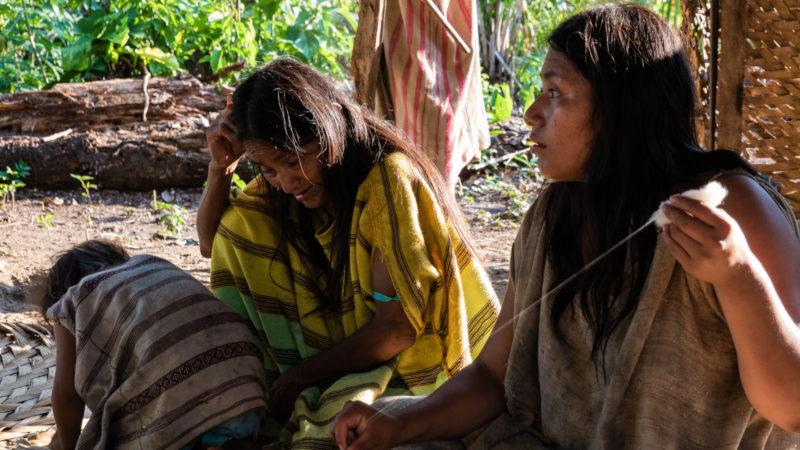 Femmes faisant du fil à partir de coton Puerto Maldonado
