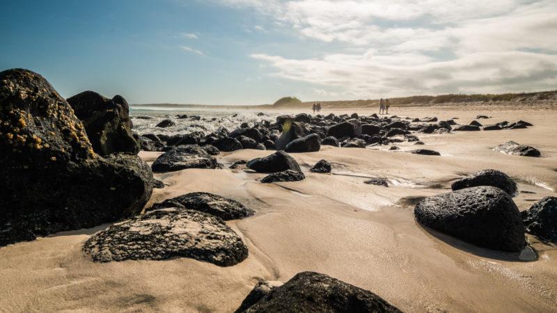 Tortuga bay beach Galapagos