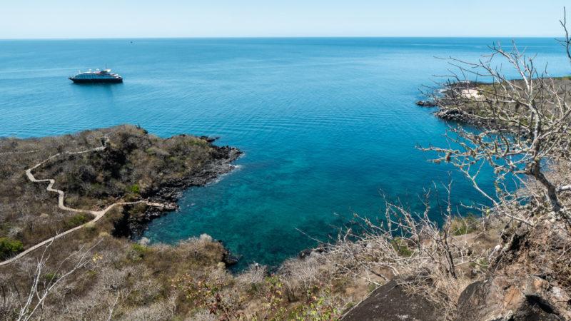 Tijeretas San Cristobal Galapagos