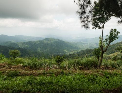 Minca – Colombie